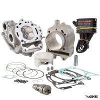 Malossi Bore Up Kit Piaggio MP3 Yourban 125cc (218...